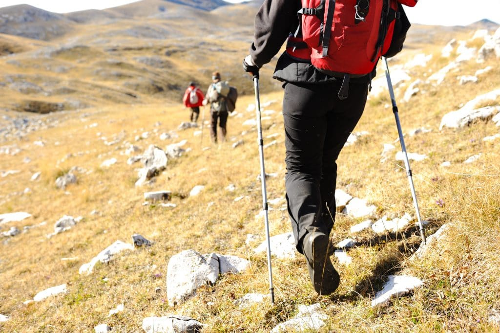 Multiple Hikers with Trekking Poles in the mountains